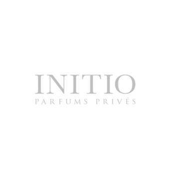 صورة الشركة Initio